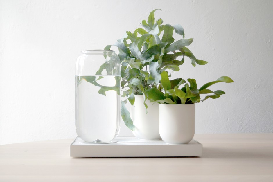Tableau_Automatic_Houseplant_Watering_Tray_Pikaplant_White_03