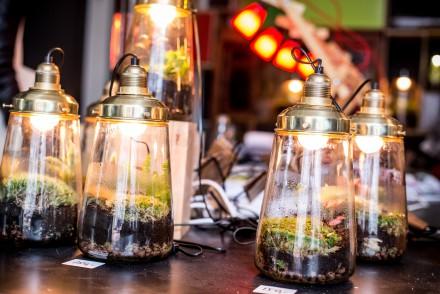 Spruitje maakt plantenwerelden in lampen