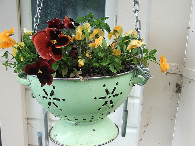 Colander-planter