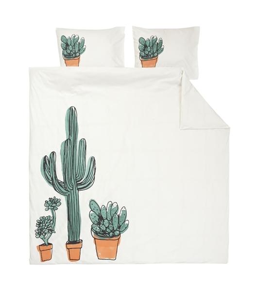 Dekbed cactus