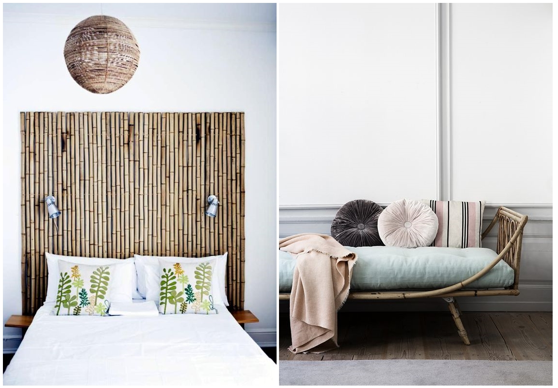 Bamboe voor binnen perfect het is een bamboe of een varen for Schilderij buiten intratuin