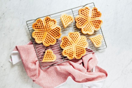 Hummingbird wafels