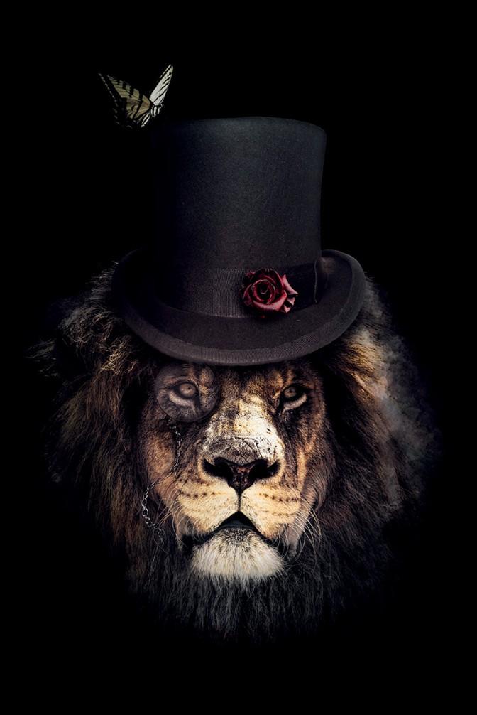 classy_lion_CMYK_LIGHT
