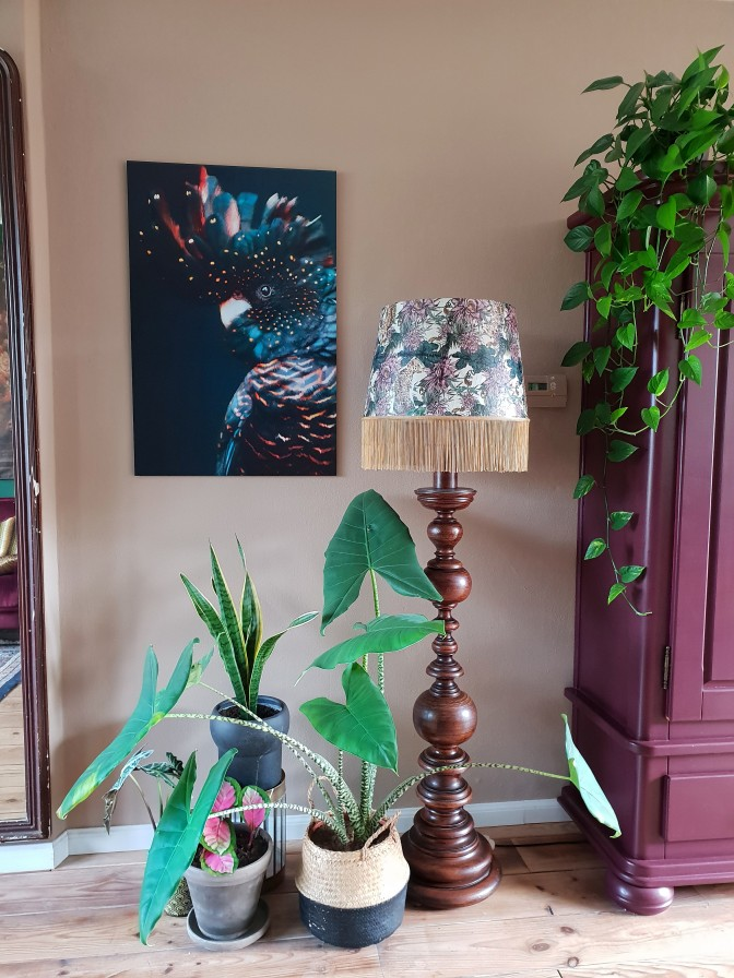 Favoriet - Cockatoo - oranje in paars interieur